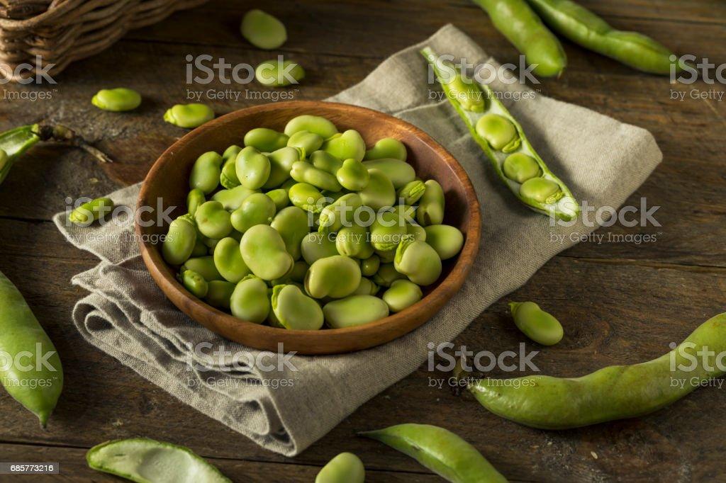 Raw Organic Fresh Green Fava Beans royalty-free stock photo