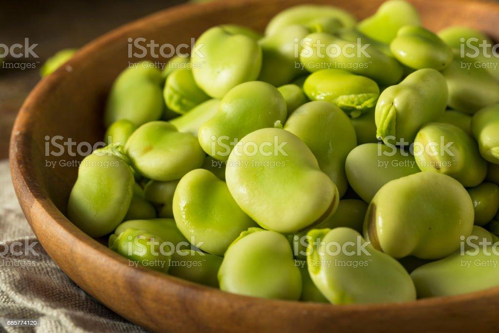 生有機鮮綠蠶豆 免版稅 stock photo