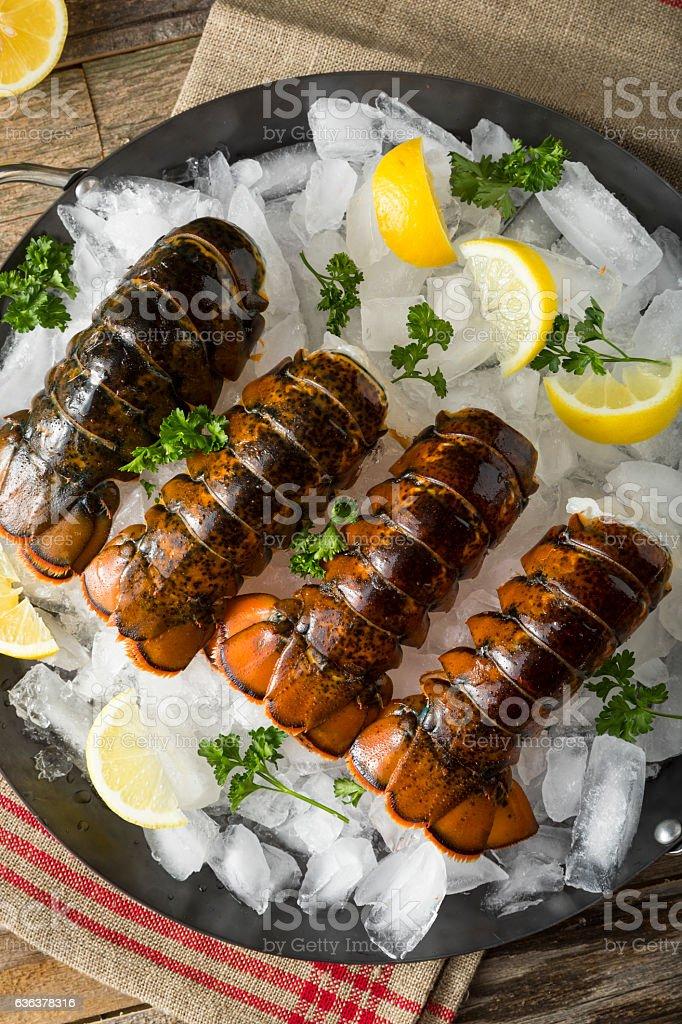 Raw Organic Fresh Lobster Tails stock photo