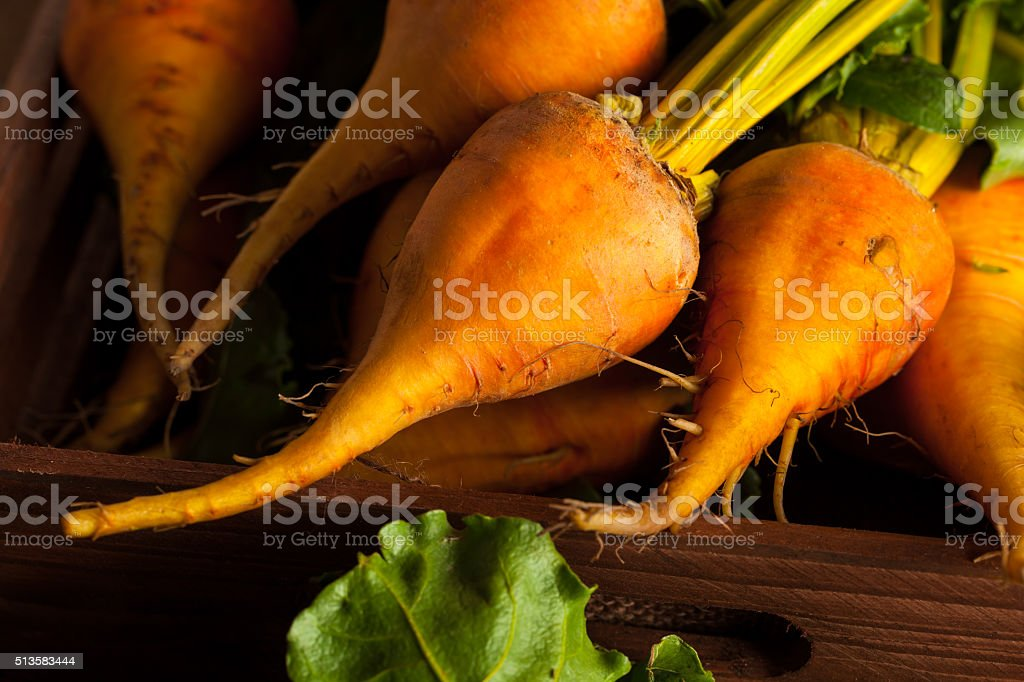 Raw Organic Golden Beets stock photo