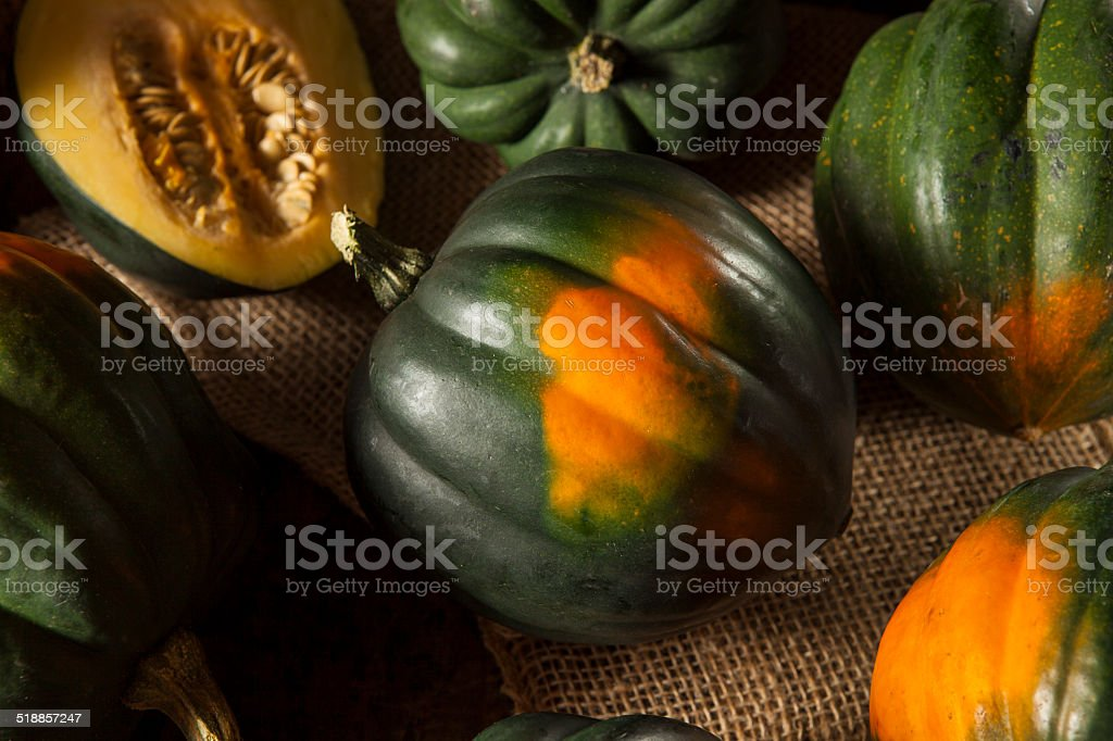 Raw Organic Green Acorn Squash stock photo