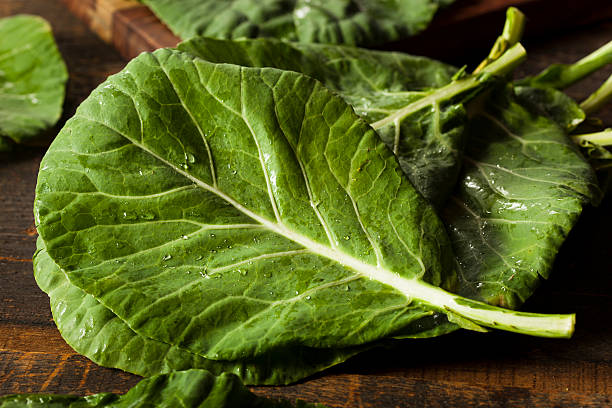 Raw Organic Green Collard Greens stock photo