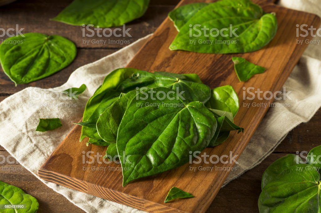 Raw Organic Green Pan Leaves royalty-free stock photo