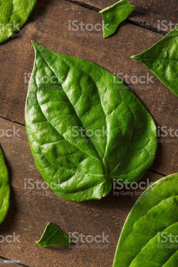 Raw Organic Green Pan Leaves royalty-free stock photo