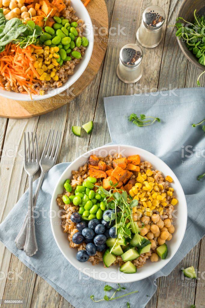 Raw Organic Healthy Buddha Bowl stock photo