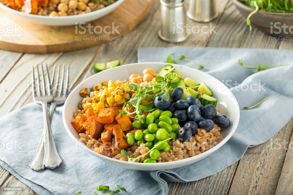 Raw Organic Healthy Buddha Bowl stock photo