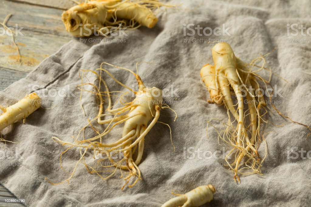 Raw Organic Healthy Ginseng Root stock photo