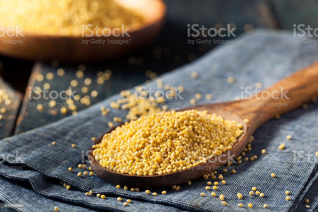 Raw Organic Healthy Millet stock photo