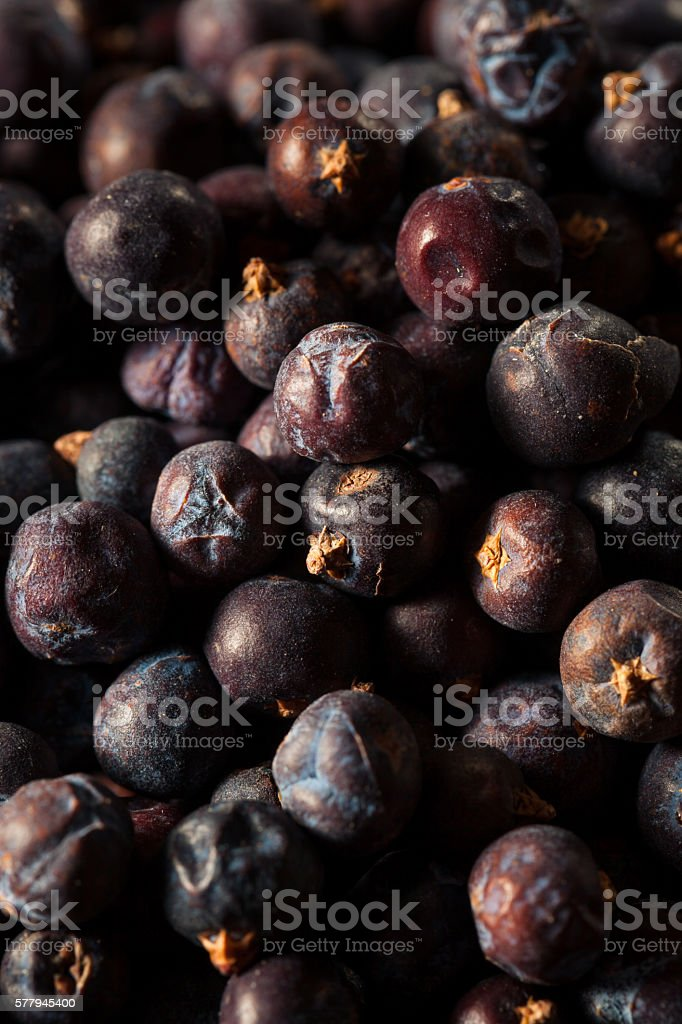 Raw Organic Juniper Berries - foto de stock
