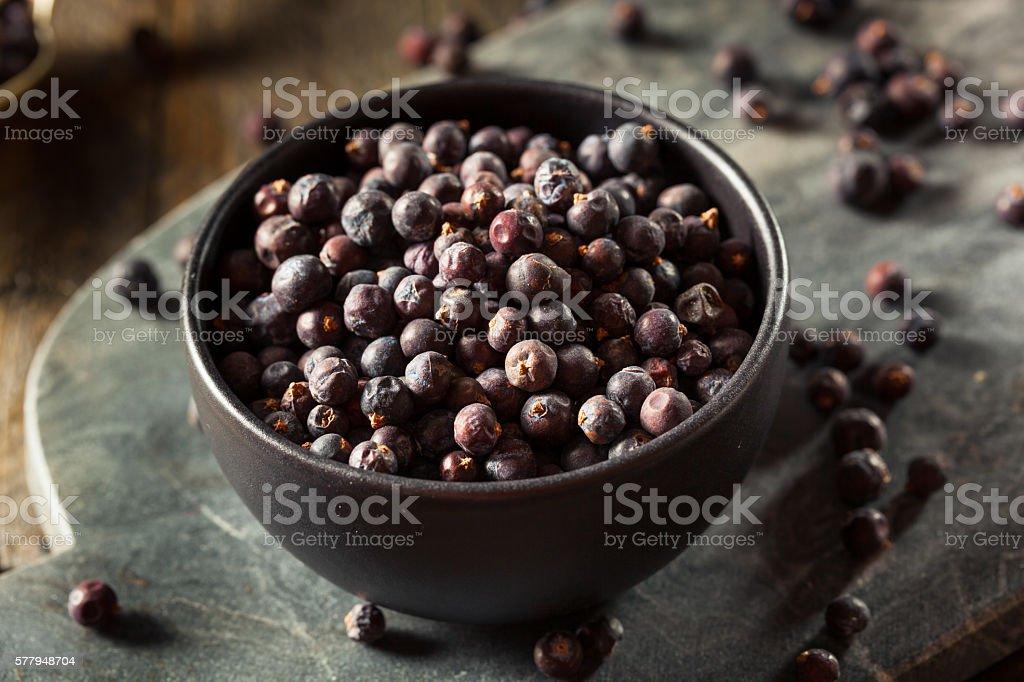 Raw Organic Juniper Berries - foto de acervo