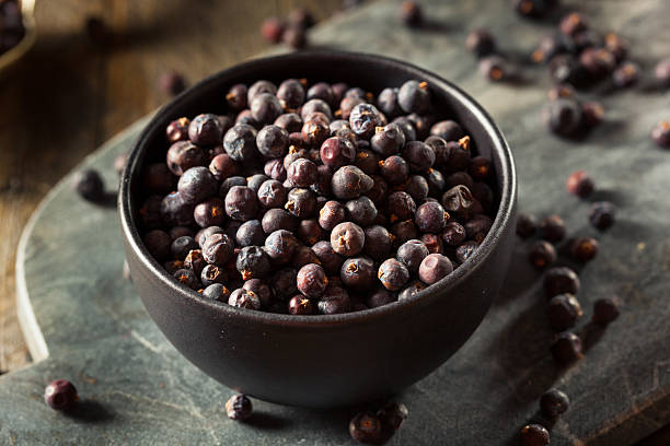 Raw Organic Juniper Berries - foto de acervo