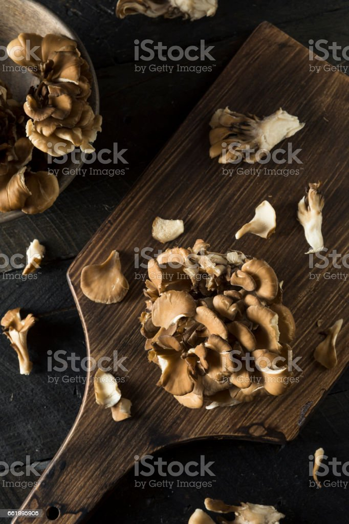 Raw Organic Maitake Mushrooms royalty-free stock photo