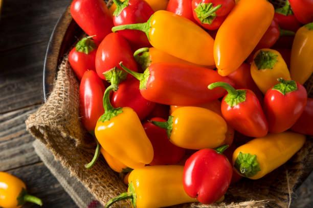 raw organic mini sweet peppers - papryka słodka zdjęcia i obrazy z banku zdjęć