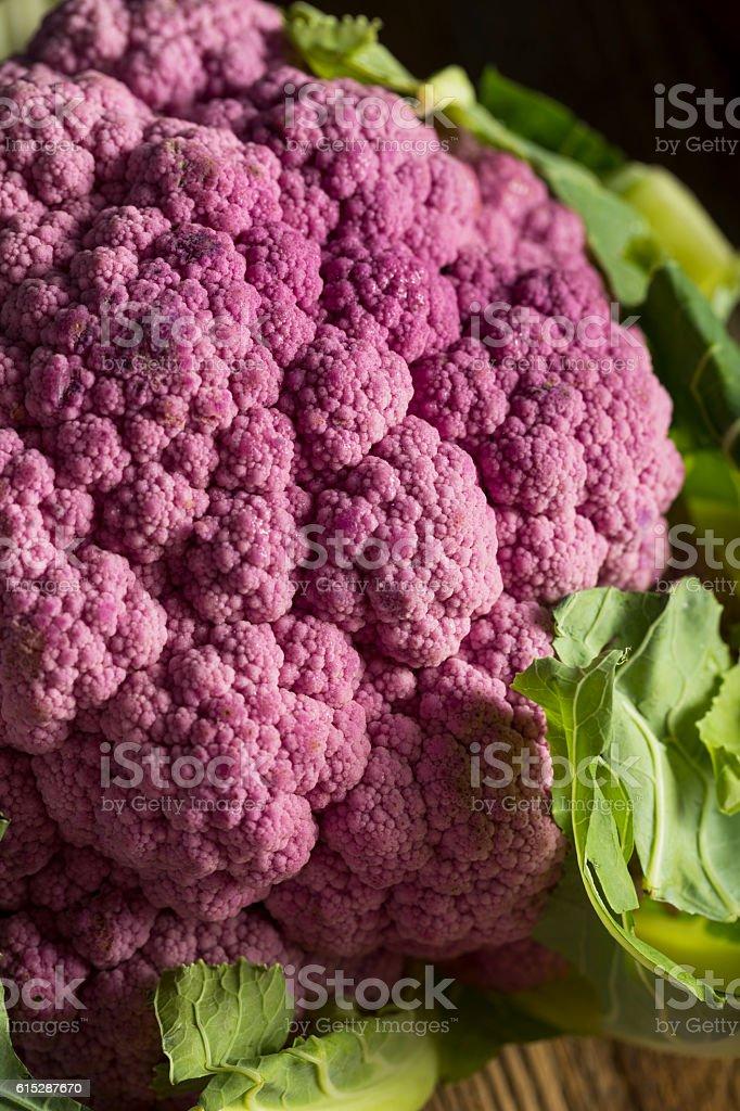 Raw Organic Purple Cauliflower stock photo