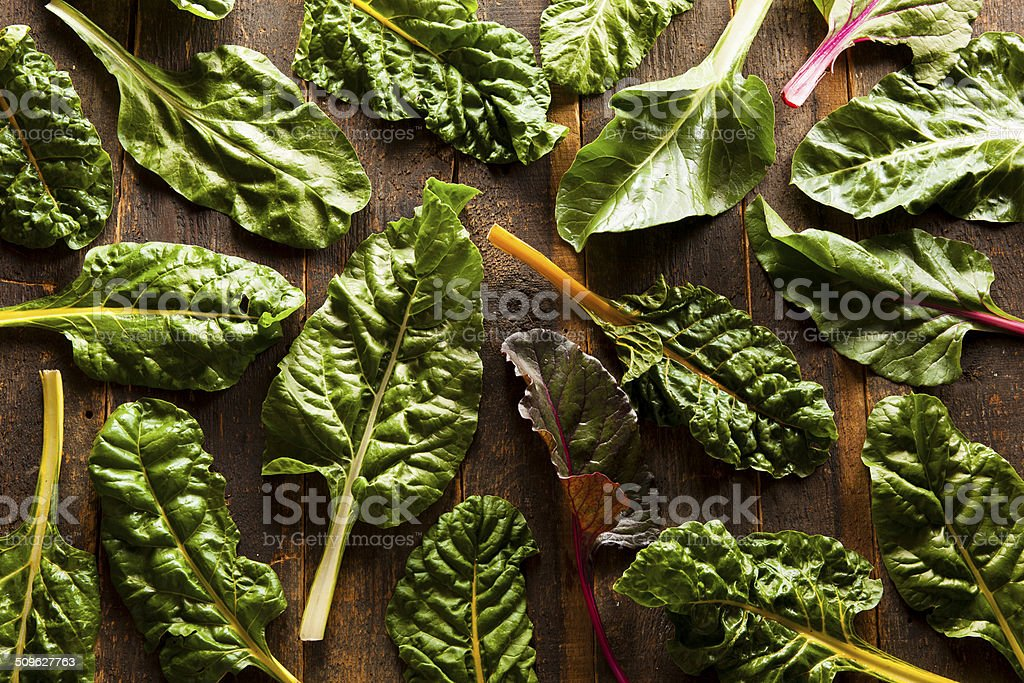 Raw Organic Rainbow Swiss Chard stock photo