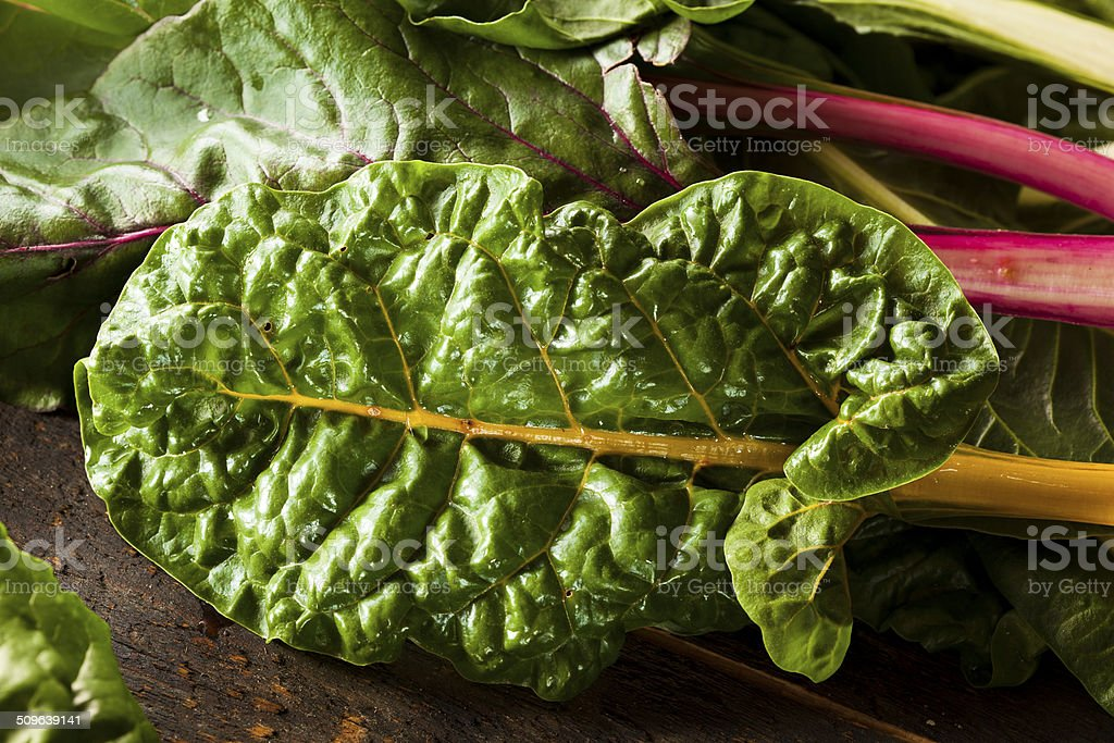 Raw Organic Rainbow Swiss Chard stock photo