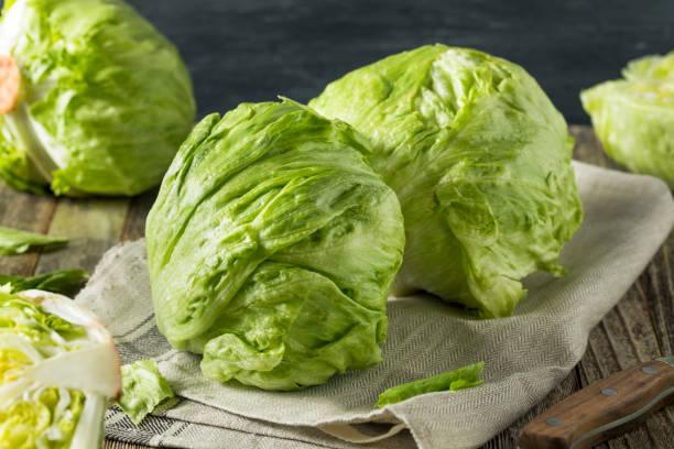 Raw Organic Round Crisp Iceberg Lettuce stock photo