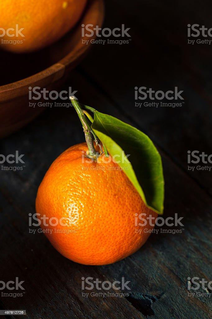 Raw Organic Satsuma Oranges stock photo