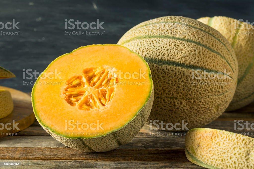 Raw Organic Tuscan Melon Cantaloupe royalty-free stock photo