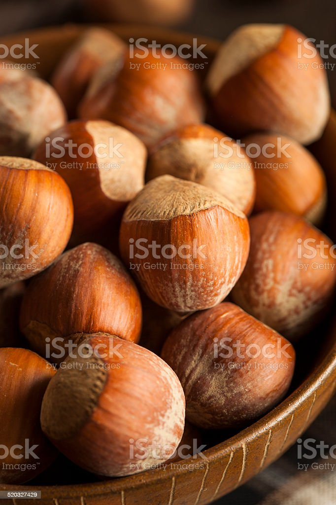 Raw Organic Whole Hazelnuts stock photo
