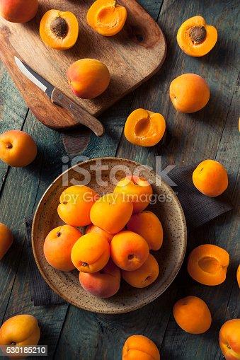 istock Raw Organic Yellow Apricots 530185210