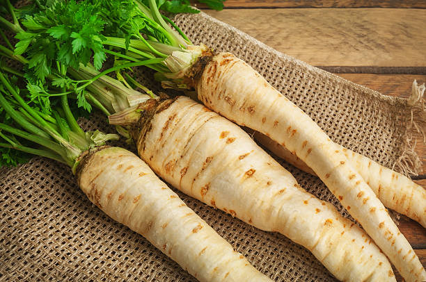 raw parsley roots stock photo