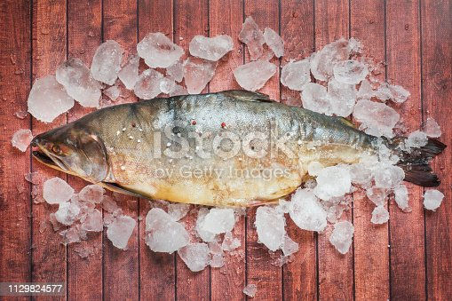 istock Raw pink salmon fish with ice on a dark table. 1129824577