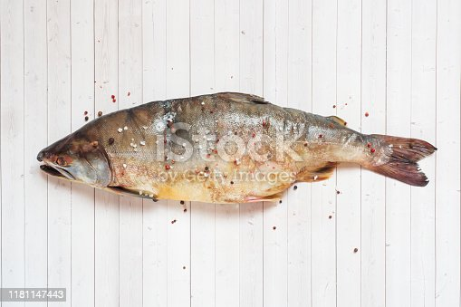 istock Raw pink salmon fish with spices on a light table. 1181147443