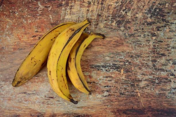 원시 질경이 바나나, 편평한 누워 - 플렌틴 바나나 뉴스 사진 이미지