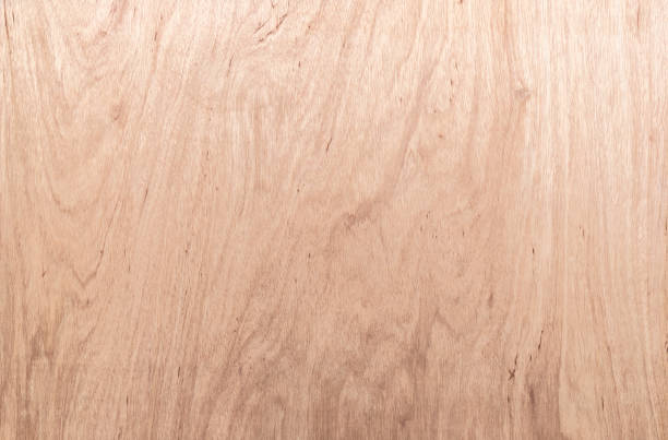 raw plywood background - anthony mcgovern stock photos and pictures
