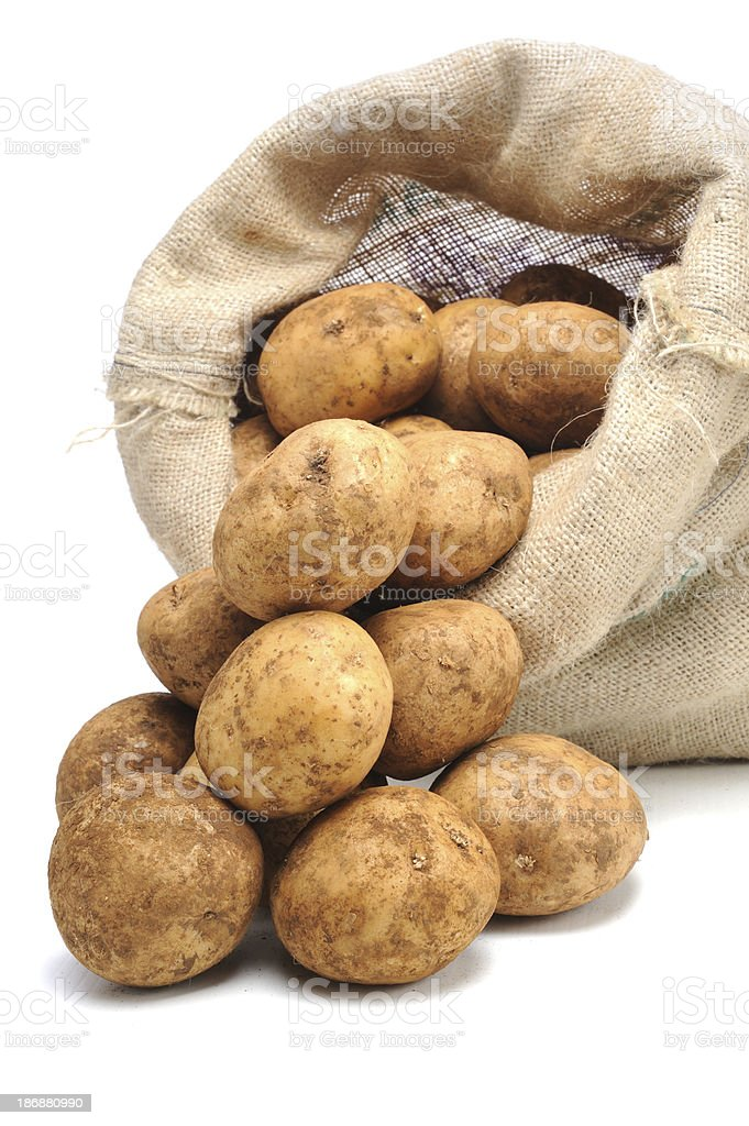 Raw Potato in Hessian Bag royalty-free stock photo