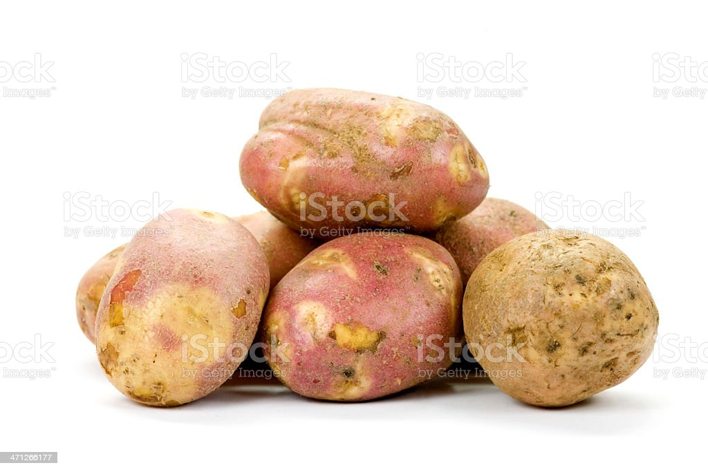 Raw potato royalty-free stock photo