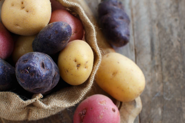 raw potatoes close up - batata crua imagens e fotografias de stock