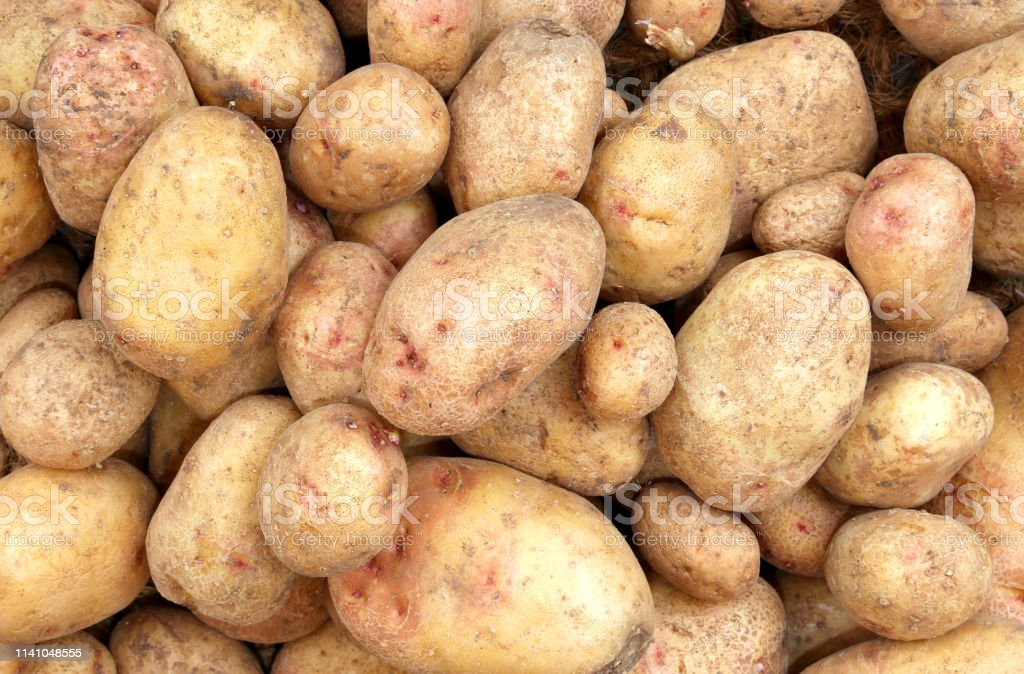 organing farming potatoes for sale in the grocery
