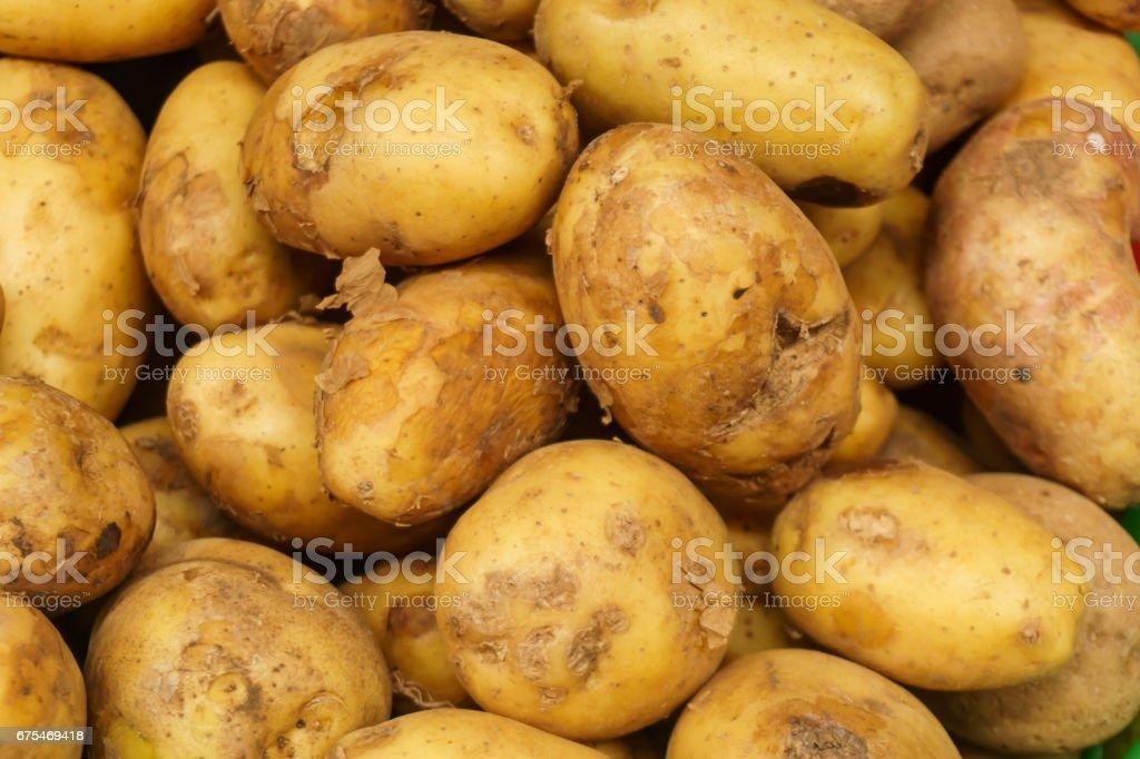raw de pommes de terre photo libre de droits
