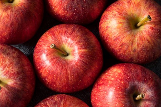 Raw Red Organic Gala Apples stock photo