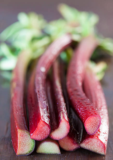 Raw, red rhubarb stalks stock photo