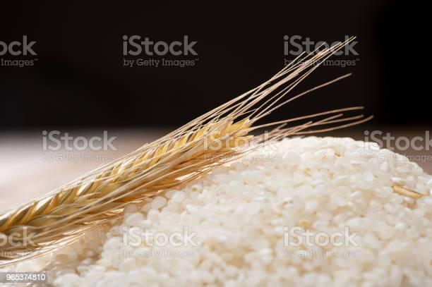 원시 쌀과 밀에 나무 배경 0명에 대한 스톡 사진 및 기타 이미지