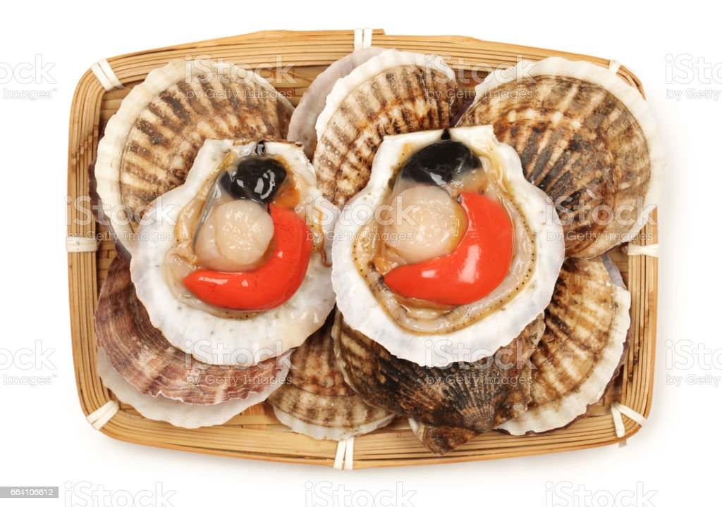 Raw scallops  isolated on white background foto stock royalty-free