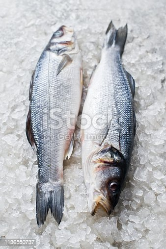 496065234istockphoto Raw sea bass on ice. Gray background, top view. 1136550737