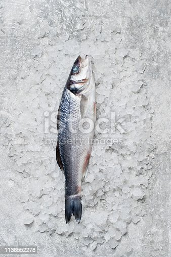 496065234istockphoto Raw sea bass on ice. Gray background, top view, space for text. 1136552278