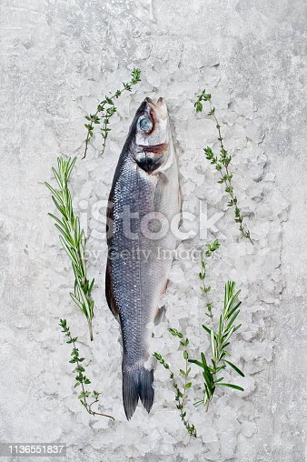 496065234istockphoto Raw sea bass on ice with rosemary and thyme. Gray background, top view, space for text. 1136551837