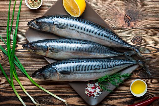 king mackerel Fish