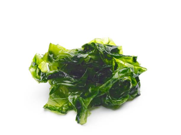 Raw seaweed on white stock photo