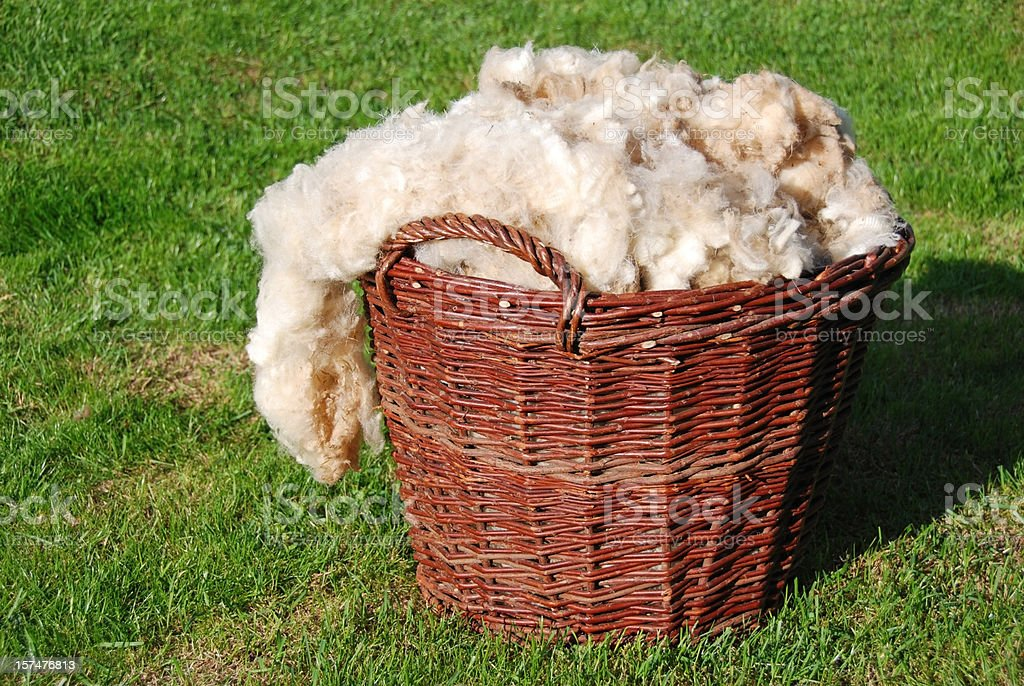 raw sheep wool royalty-free stock photo
