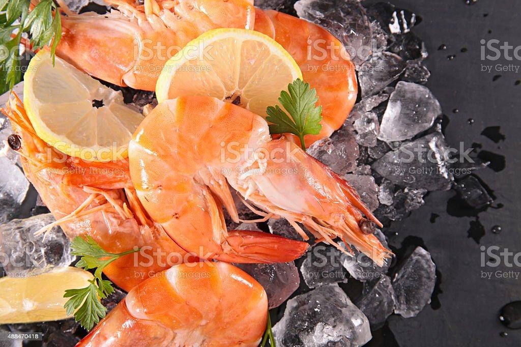 raw shrimp stock photo
