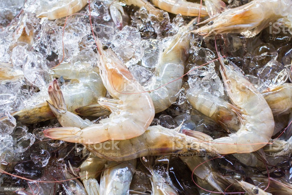 Raw shrimp sold in the fresh market. royalty-free stock photo