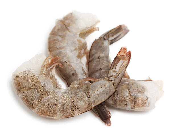 Royalty Free Raw Shrimp Pictures Images And Stock Photos Istock