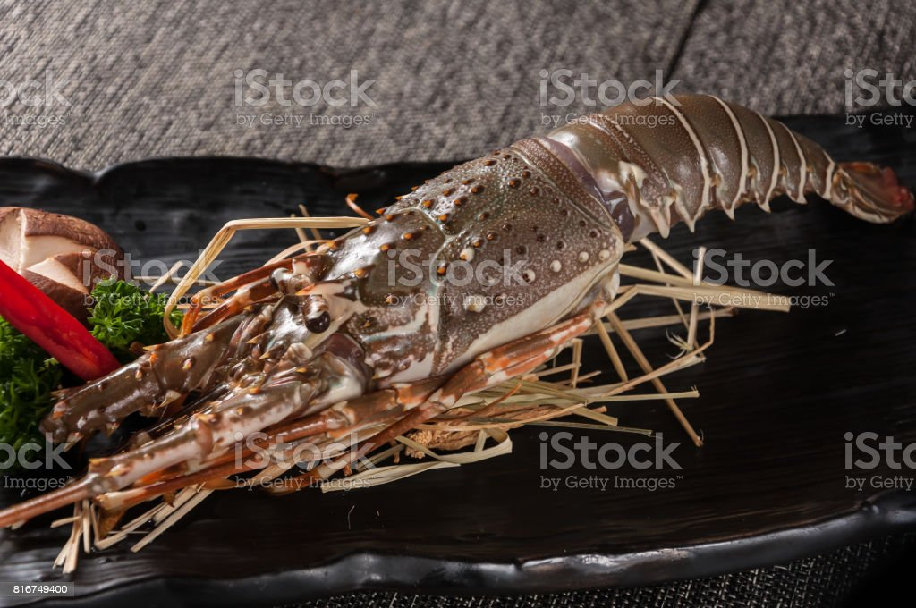 Raw spiny lobsters stock photo
