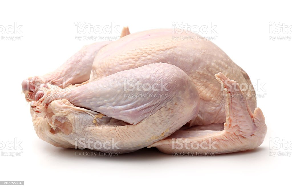 Raw Turkey stock photo